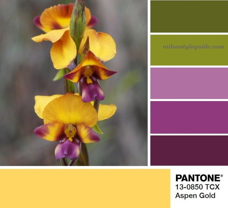 модная цветовая палитра весна лето 2019 Пантон PANTONE 13-0850 Aspen Gold pallet