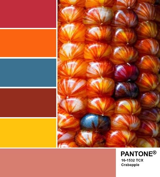 PANTONE 16-1532 Crabapple palette