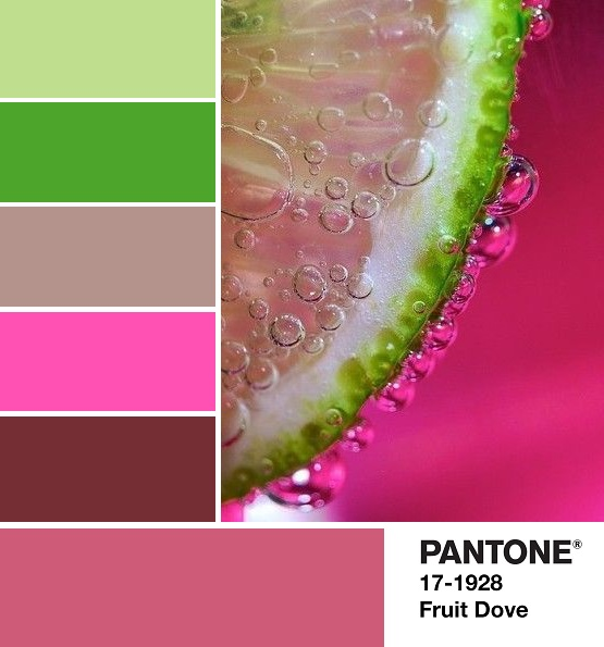 PANTONE 17-1926 Fruit Dove palette