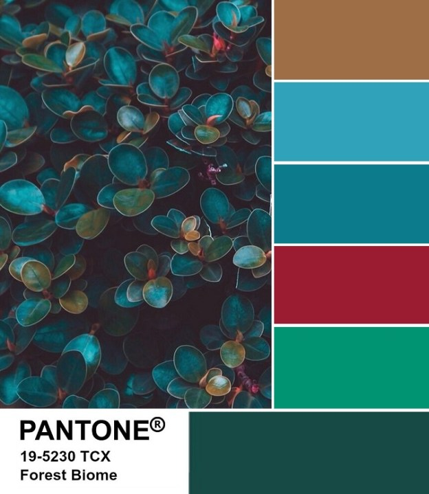 PANTONE 19-5230 Forest Biome palette