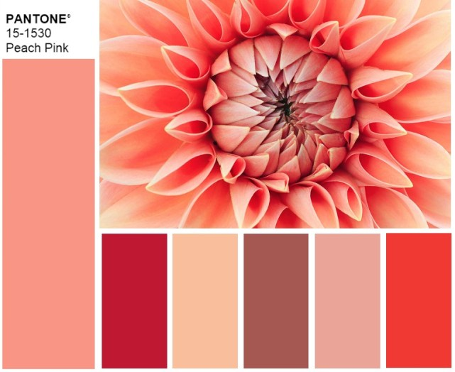 Pantone 15-1530 Peach Pink fall winter 2019 2020 palette