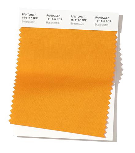 PANTONE 15-1147 Butterscotch