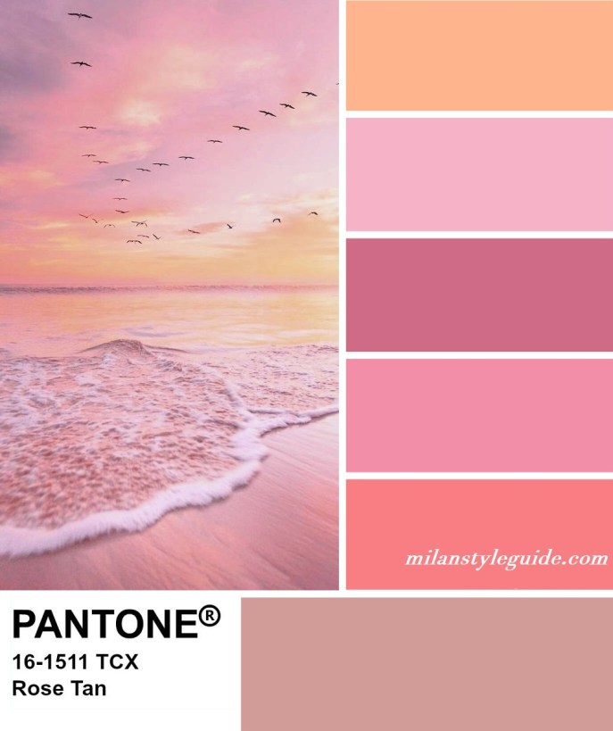 PANTONE 16-1511 Rose Tan - Пыльный розовый
