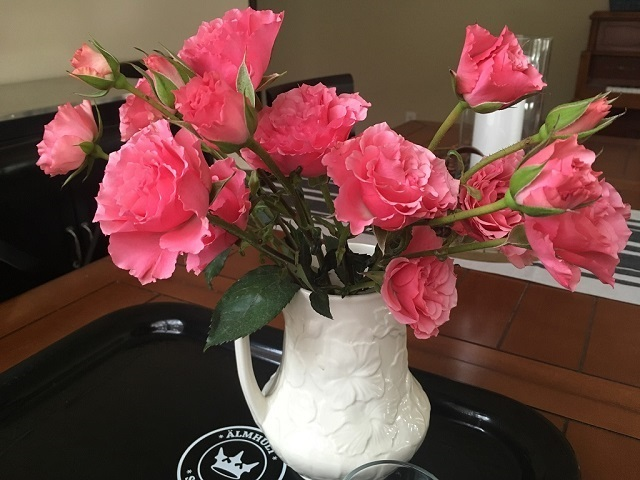 pink roses in a pitcher