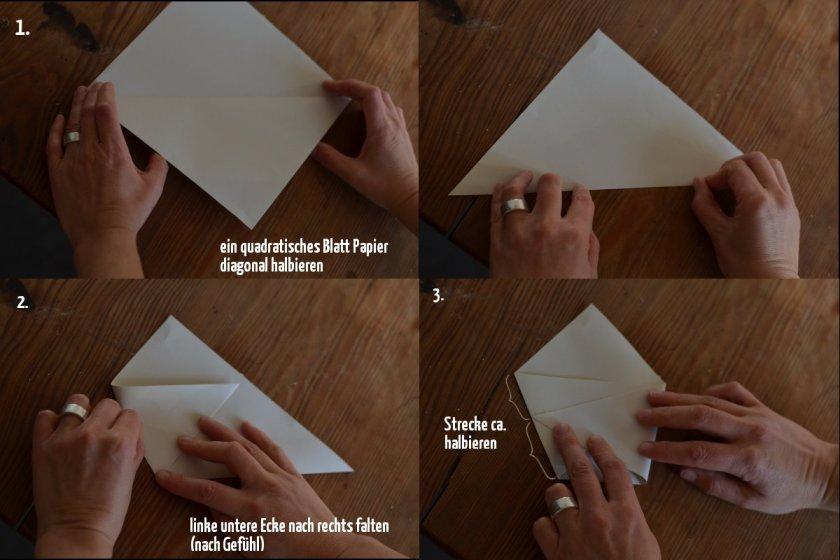 Samentüte Schritt 1 bis 3