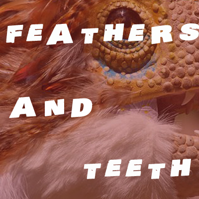 feathers and teeth