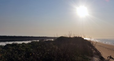 Morning sun over Bunga Arm