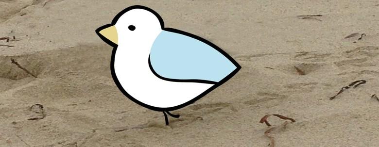 Seagull banner