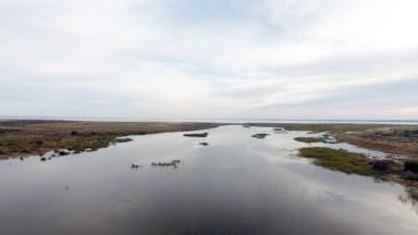 Wetland at Eastern end of Four Mile Beach, Lake Hindmarsh
