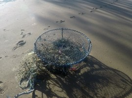 Crabpot, I guess it washed up here during Cyclone Debbie