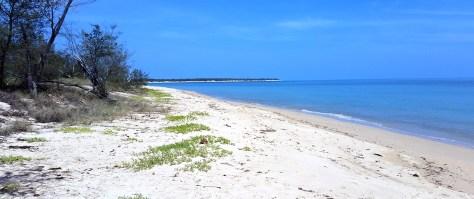 Amasing coastline