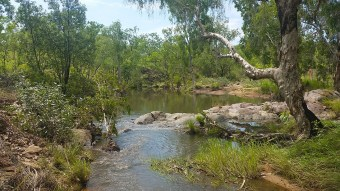 Burrell Creek