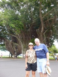 Barry & Ann under the banyan tree in Hilo
