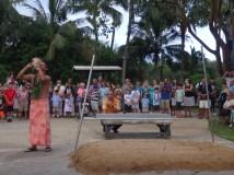 Let the luau begin