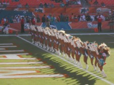 Dolphins Cheeleaders kicking it up