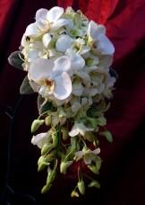 Каскаден-букет-от-орхидеи