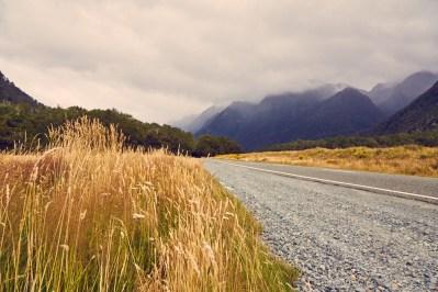 Landschaft, Fjordland, Nationalpark, regnerisch, regenreich, Landschaft, landscape, Feld, bewölkt
