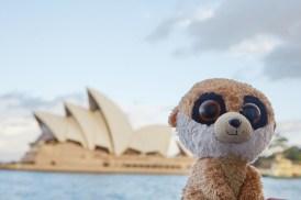 Ed, Ed das Erdmännchen, Maskottchen, Reisemaskottchen, Sydney, Opera House, Australien, Roadtrip