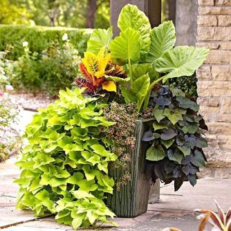 potted-flower-arrangements-potted-flower-centerpieces-ideas-outdoor-potted-flower-arrangement-ideas