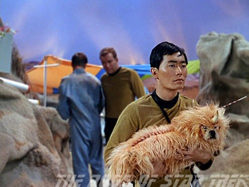 The Dogs of Star Trek