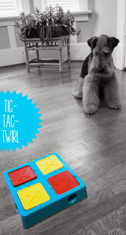 Puzzle Games for Dogs:</br> Tic-Tac-Twirl