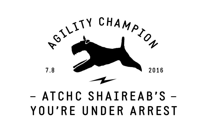 Miles Earned His Agility Champion Title