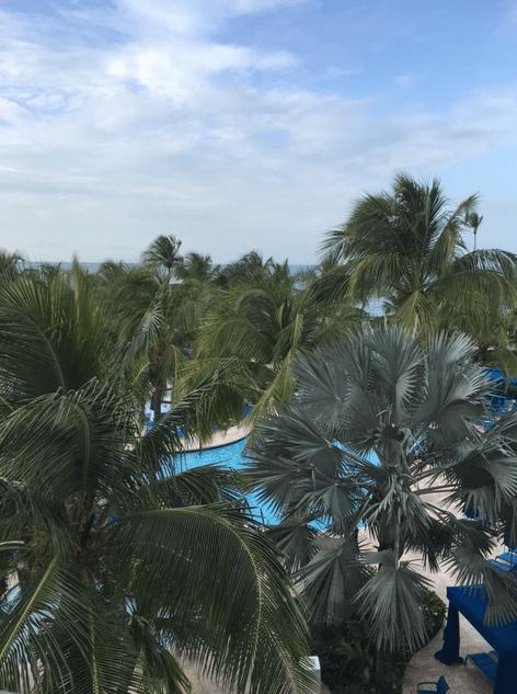 puerto rico wynhdma view