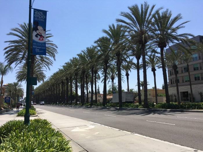 Restaurants In Garden Walk Anaheim: That Is NOT A Sofa Bed! Hyatt House At Anaheim Resort