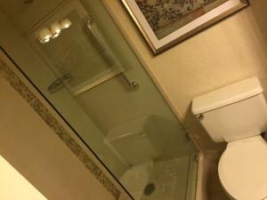 Hilton JFK Bathroom