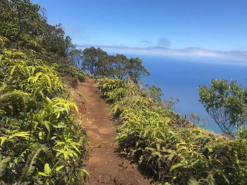 Explore the Garden Island on Foot: A Kauai Hiking Guide for the First Time Visitor