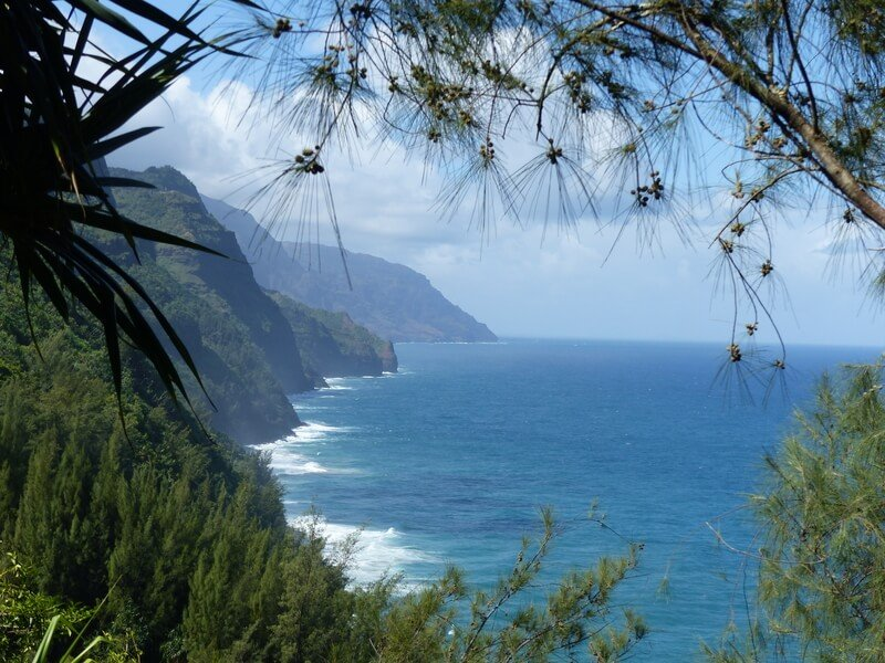 View of Pacific and mountains in kauai through the trees from above