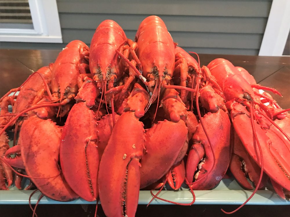 New England Road Trip   A Foodie Guide to One of the Best Local Food Scenes in the Country