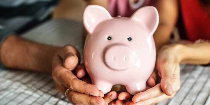 Two hands holding pig coin bank