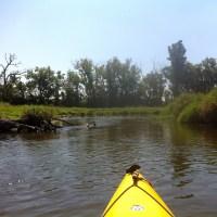 Black Earth Creek