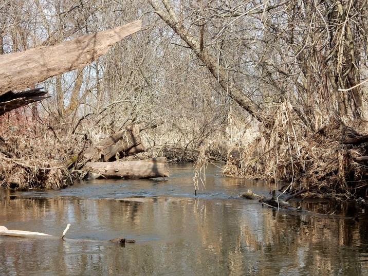 Token Creek