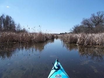 Scuppernong Creek