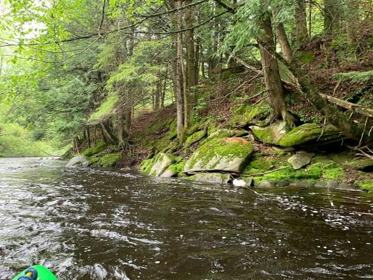 New Wood River