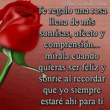 imagenes con frases te regalo una rosa