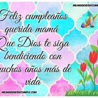 Feliz cumpleaños querida Madre