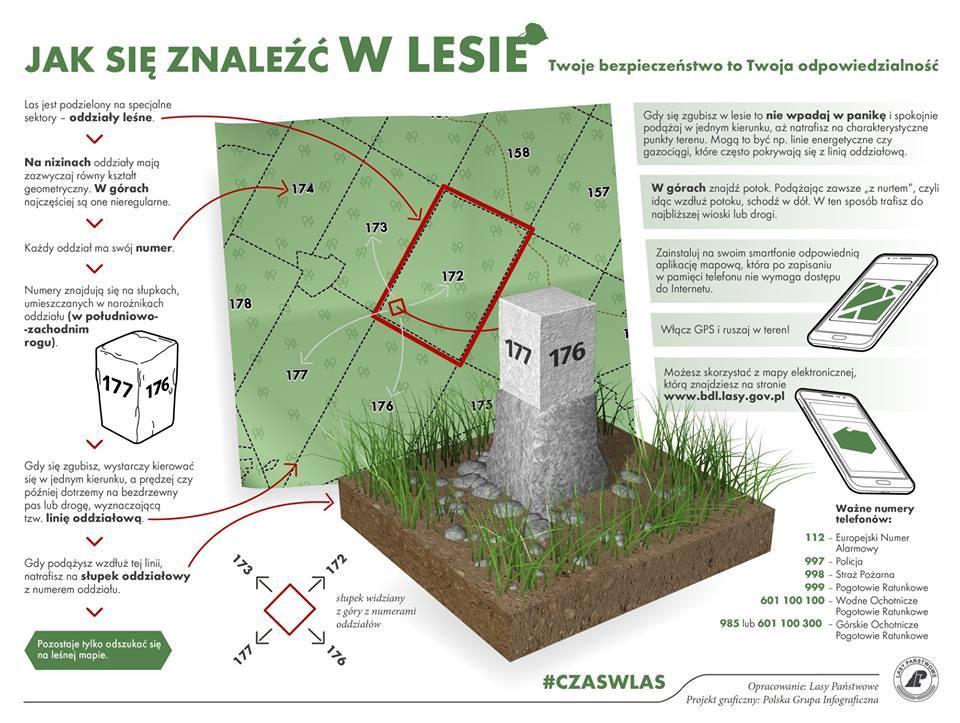 infografika Lasy Państwowe