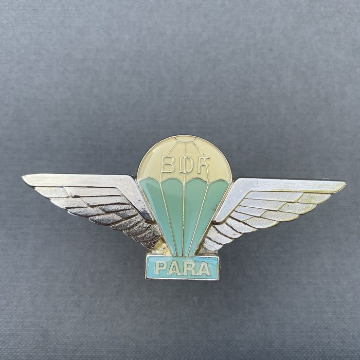 BDF Botswana Defence Force Para Wing Badge BASIC