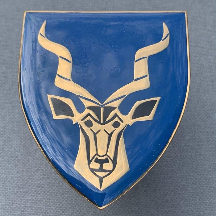 SADF SANDF Regiment Christiaan Beyers Army Infantry Reserve badge Flash