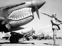 Curtiss P-40 Warhawk Fighter Aircraft Military Wallpaper