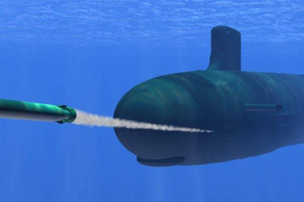 Progeny Wins $115M to Upgrade Mk 48 mod 7 CBASS Torpedo Sonar