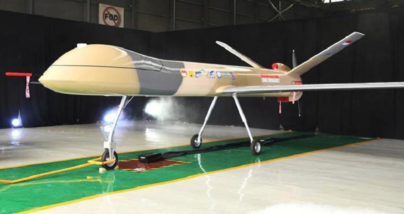 Indonesian Aerospace  medium-altitude, long-endurance (MALE) unmanned aerial vehicle (UAV)