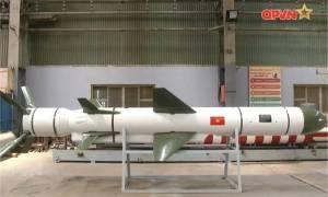Vietnam Unveils VCM 01 Based on Kh-35 Anti-Ship Cruise Missile