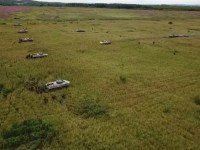 Russian Kostroma Guards Airborne Regiment Hold Intensive Tactical Drills in Yaroslavl Region
