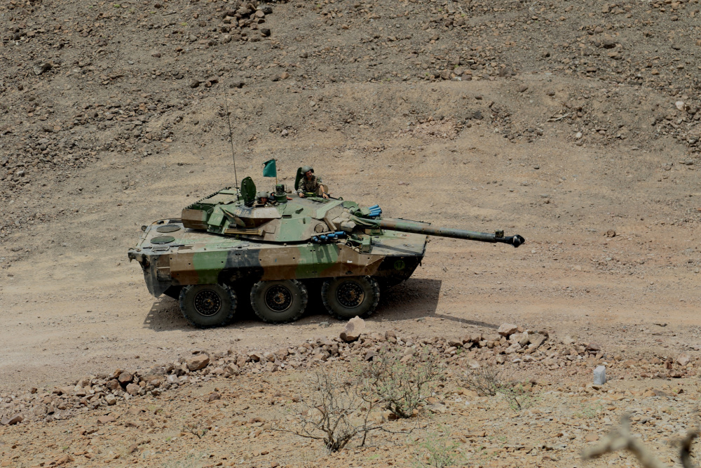 French and US Armies Conduct Joint Combined Arms Live-fire Exercise in Djibouti