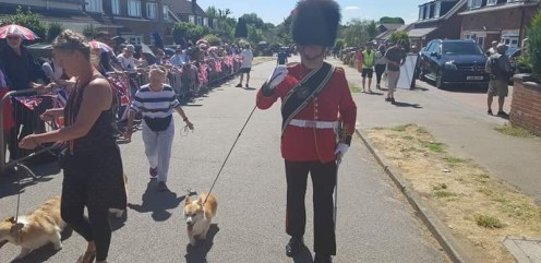 Military-Band-With-Dogs-Parade
