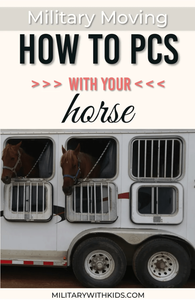 Military Moving: How to PCS with a Horse.